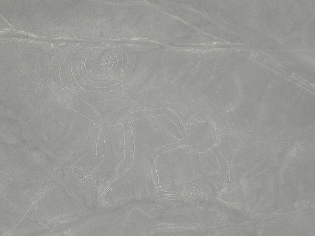 Nazca-Linien, Affe